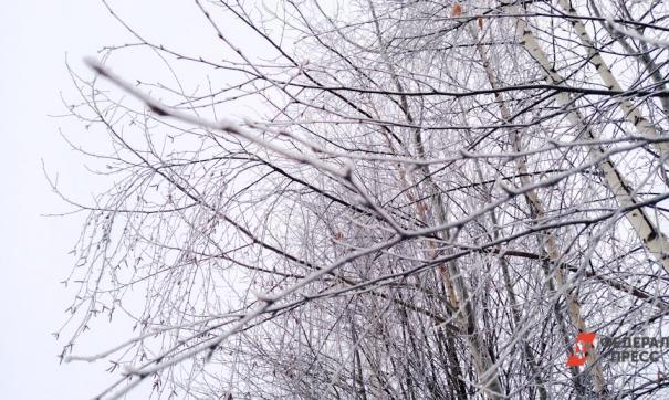 Россиян предупредили о морозах на 23 февраля