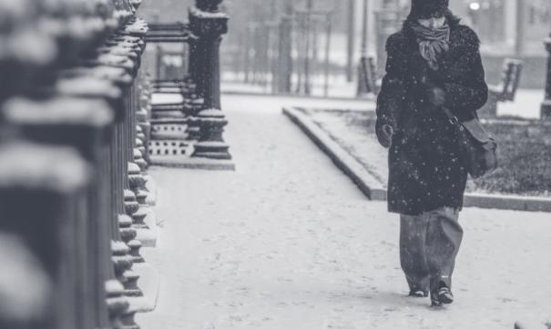 Мороз в Ленобласти