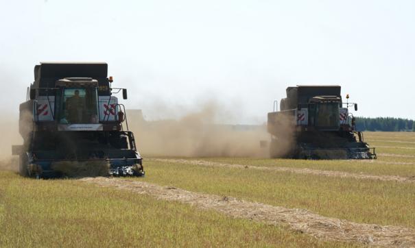 Тракторы пашут