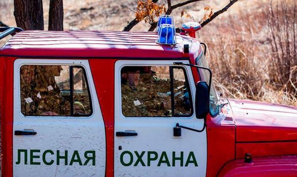 В Свердловской области введен противопожарный режим
