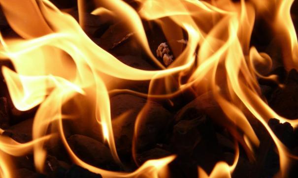 В Приморье за два дня потушили 35 лесных пожаров