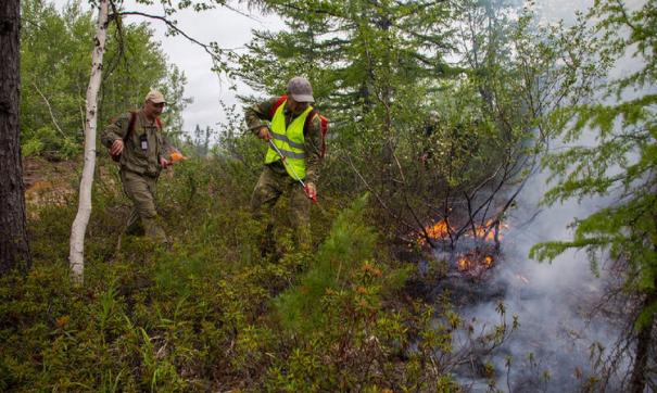 На Сахалине объявили начало пожароопасного сезона