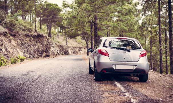Водителям машин в некоторых субъектах запретят или ограничат въезд в леса