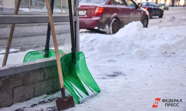 Екатеринбургский фотограф решением суда будет убирать снег