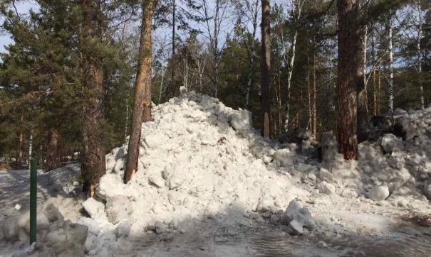 Вывоз грязного снега в бор Челябинска продолжается