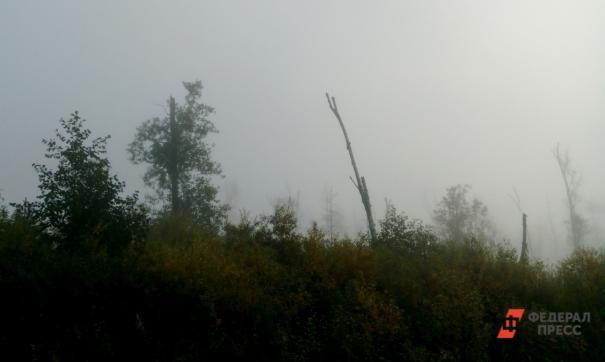 В Новосибирской области осложнилась ситуация с природными пожарами