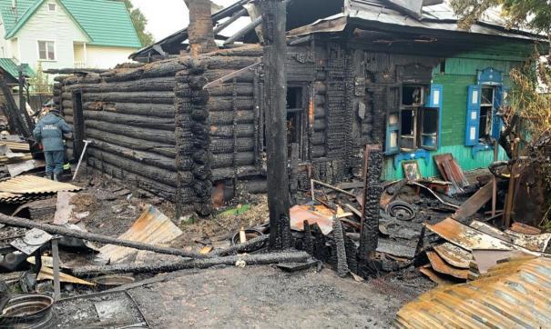 Огонь в камышах спровоцировал лесной пожар рядом с омской деревней