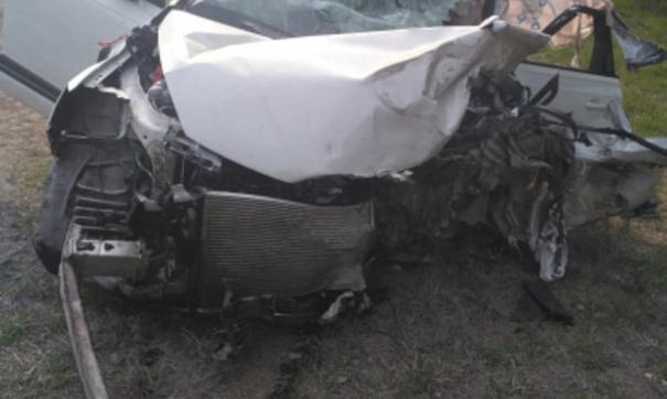 После смертельного ДТП на курганской трассе возбудили уголовное