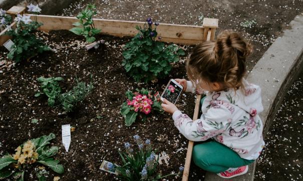 В Роспотребнадзоре посоветовали провести майские праздники на даче