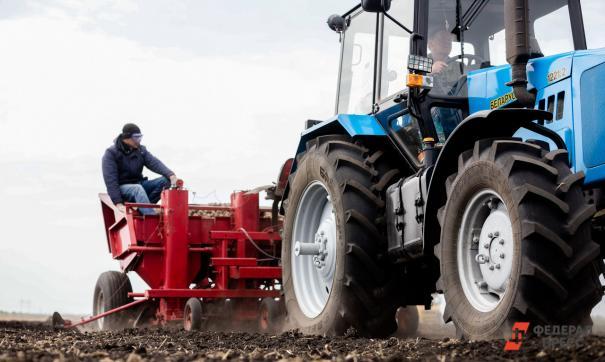 За последние сутки яровыми засеяно 94 тысячи гектаров