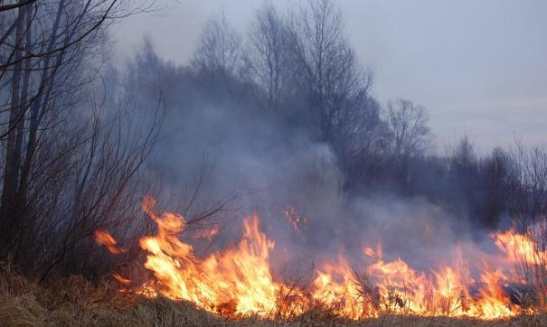 Крупный пожар ликвидировали в Миассе