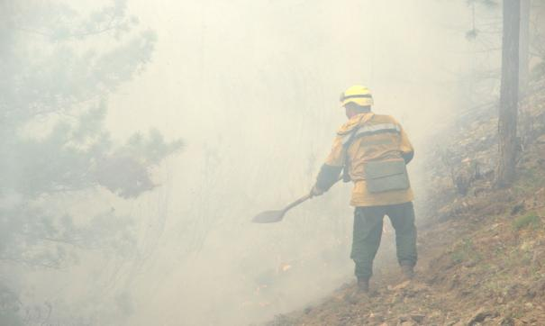 В Камышловском районе горит 1 100 га болота