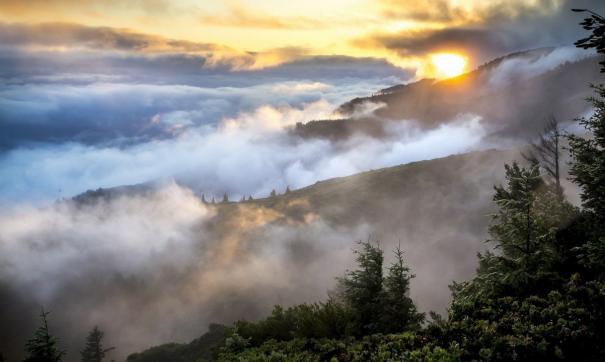 Огнем охвачено почти 17 тысяч гектаров, а в правительстве региона сообщают о 1600 гектарах