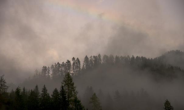 За сутки площадь лесных пожаров в Приангарье увеличилась на 15 тысяч гектаров
