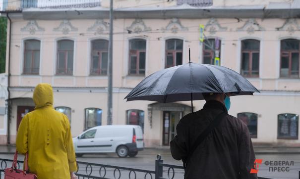 Россиянам предрекли бесснежные зимы