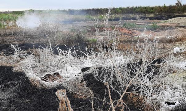 Общественники обнаружили провалы на месте эндогенного пожара под Челябинском