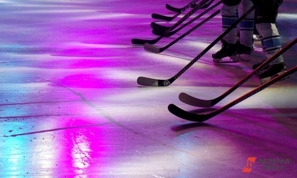Премьер-министр российского правительства во время визита в Ульяновск предложил Третьяку выпускать хоккейные клюшки