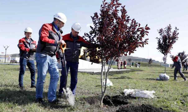 Компания проводит экологическую акцию в регионах присутствия