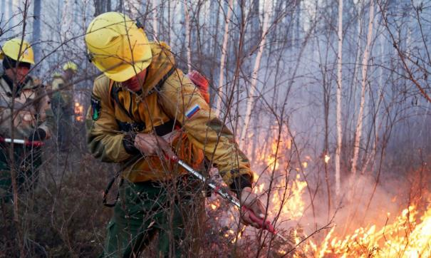 В Якутии за последние сутки потушили 45 лесных пожаров