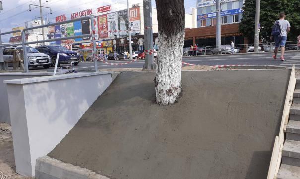 В центре города сотрудники коммунальной сферы залили бетоном деревья