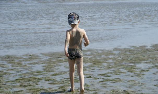 Волонтеры разыскивают четырехлетнего Илью Молева, который ушел из дома 19 июля