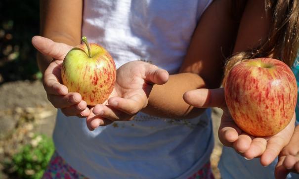 Врач предостерегла детей от вегетарианства