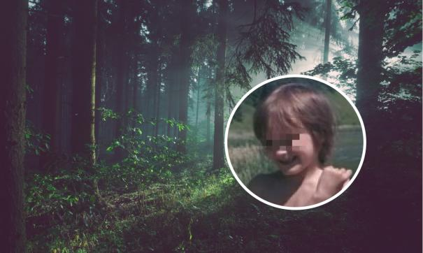 4-летний мальчик с аутизмом сбежал из дома в лес в Ворсме