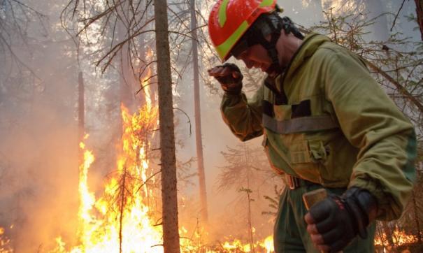 Главная проблема, которую вызывает глобальное потепление в ДФО – мощнейшие удары стихии