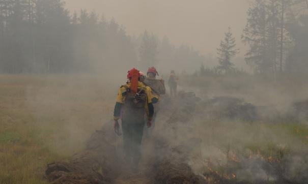В сентябре ЧС в лесах прогнозируют на юге Челябинской области