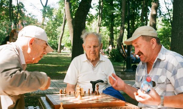 Дедки играют в шахматы