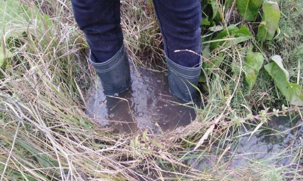 Это уже третий за год излив нечистот на грунт в копейском поселке