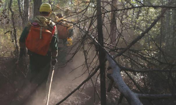 Пояс мусорных свалок у леса обнаружили активисты Златоуста