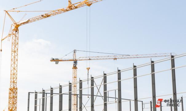 Компания «Самарский строительный альянс» подала иск против главы города Елены Лапушкиной