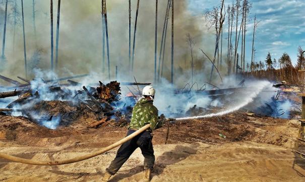 Как в Поволжье борются с лесными пожарами в регионах