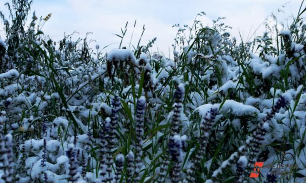 В Челябинской области ожидаются грозы и мокрый снег