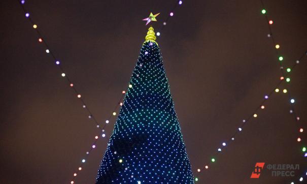 В центре Екатеринбурга вновь разместят елку-конус