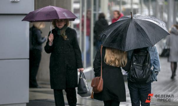 Осень люди с зонтами