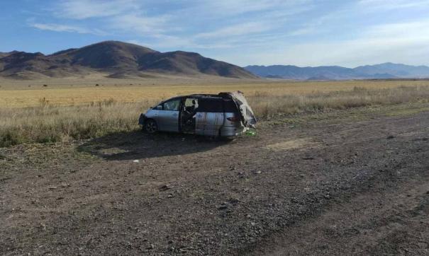 Два пассажира иномарки погибли при ДТП с лошадью в Туве