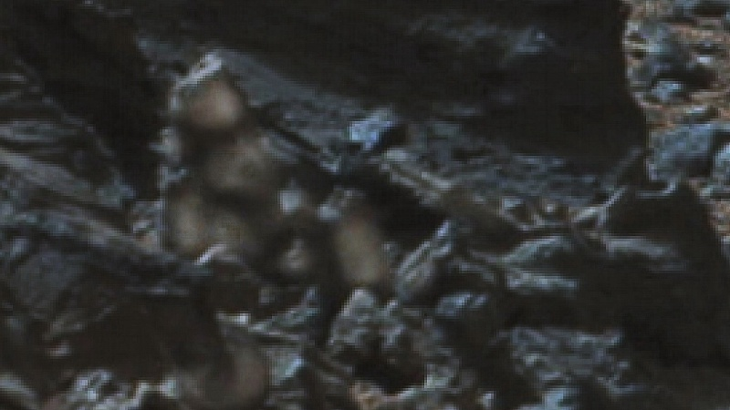 Увеличен фрагмент фото, на котором, по версии Дегтерева, изображено тело гуманоида.