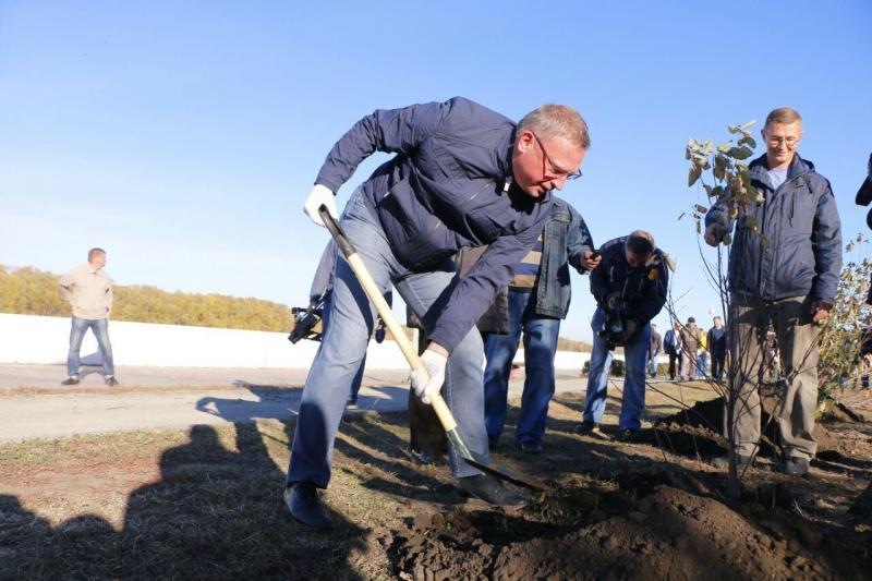 Александр Бурков сажает деревья
