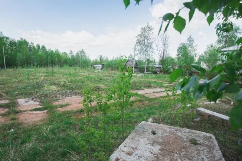 Сургутский район