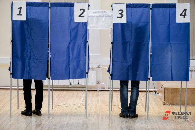 выборы грядут
